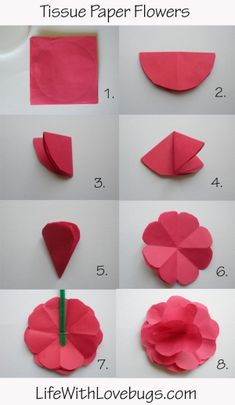 Tissue Paper Flower by Petra CR