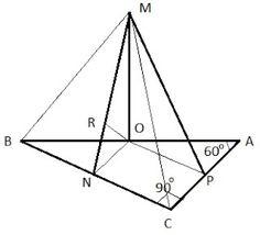 Matematică - rezolvări detaliate: Problemă cu dreaptă perpendiculară pe plan / unghi...