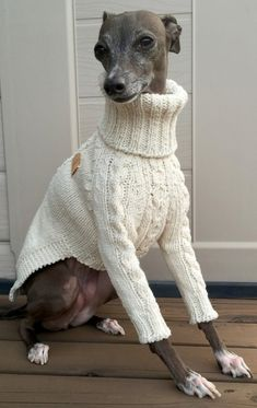 Animals And Pets, Cute Animals, Dog Suit, Hamster, Whippets, Dog Wear, Pet Costumes, Pet Life, Dog Sweaters