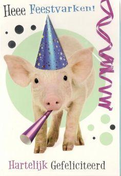 De grappigste dierenkaarten online kopen