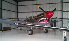 A beautiful P-40 at our local airport