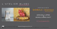 biennale 2016 - Biennale de la Céramique Villefranche-de-Rouergue