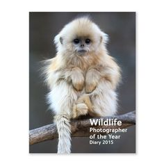 Pocket diary 2015 - Wildlife Photographer of the Year | 2015 diaries and calendars | Natural History Museum Online Shop
