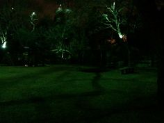 Moonlighting technique installed by #Dallas Landscape Lighting at a home in Highland Park, TX. #Moonlighting is the effect achieved when down-lights installed at just the right height on tree trunk or branches cast a #moonlit glow on to the lawn below, complete with dancing shadows of leaves and mesmerizing patterns of branches.  FREE ESTIMATES 214-202-7474 http://www.dallaslandscapelighting.net/contact/