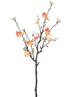 "Silk Quince Blossom Branch Spray in Peach Coral<br>29"" Tall"