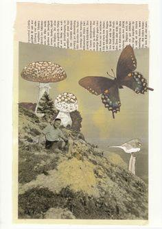 barbara bee: Sketchbook + music