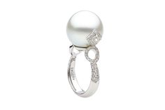 AUTORE Ring  18k White Gold with White Diamonds and a South Sea pearl  JR12080004 South Sea Pearls, South Seas, White Diamonds, Classic Style, Gemstone Rings, White Gold, Elegant, Collection, Jewelry