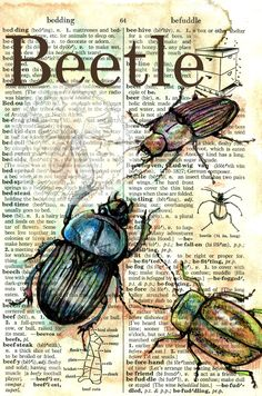 PRINT Beetle Mixed Media Drawing on Distressed by flyingshoes