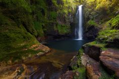 "https://flic.kr/p/qaHJhg | Green Cauldron | Kaiate Falls New Zealand  This waterfall is located 20 minutes out from Tauranga and is a series of lovely cascades all the way to this deep cool splash pool. at the right conditions you could spend hours here with the cascades above too but we were visiting with the kids in bright sunshine so limited our photography time to a few shots each. This is Marianne's version.  <a href=""http://dee-t.deviantart.com/gallery/"" rel=""nofollow"">[Deviant Art…"