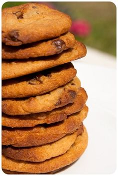 egg free chewy choc chip cookies - made these today, not many left. Basic Cookie Recipe, Easy Biscuit Recipe, Cookie Recipes For Kids, Cookies For Kids, Egg Free Cookies, Chewy Chocolate Chip Cookies, Chocolate Chips, Desserts For A Crowd, No Bake Treats