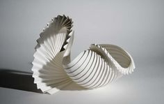 Partial Shell - Richard Sweeney.