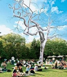 The National Gallery of Art's Sculpture Garden during one of its free weekly jazz concerts. (From: Photos: The 20 Best-Kept Secrets of Washington, D.C. )