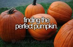 things I love about fall...  going to the pumpkin patch with our Grand kids, picking out all our pumpkins, gourds & other goodies. We feed the animals, go on the hayride, drink hot apple cider & get our faces painted! What do ya'll do?