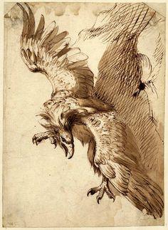 Frans Snyders, Flemish, 1579–1657, Study for Prometheus, 1612. Pen, brown ink…