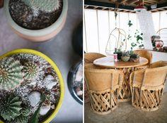detail shots of Amigo Motor Lodge in Salida, Colorado. Full of cacti, succulents, and modern decor.