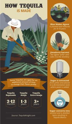 There is a lot more to tequila drinks than a cheap shot, some salt, and a lemon. Learn how the agave plant is harvested, how tequila is distilled, and why it wants its reputation back! Tequila Liquor, Tequila Agave, Mezcal Tequila, Best Tequila, Tequila Drinks, Vodka Cocktails, Summer Cocktails, Agaves, How To Make Tequila