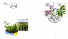 2007 Medicinal Herbs and Spices   First Day Cover