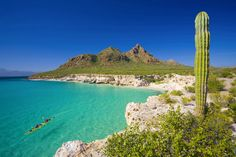 Baja Kayaking Mexico and Sea of Cortez Sea Kayak Trips Since 1988