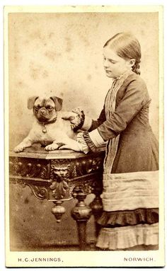 Vintage Pug photo taken in Norwich(?) in the H. C. Jennings studio. Unfortunately, no date is given. From the Libby Hall Dog Photo collection, via Flickr.