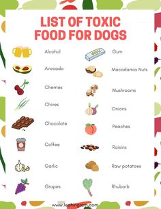 Are you looking for a list of toxic food for dogs? This blog post on human food that is dangerous to dogs can help. It even includes a free printable PDF checklist of what you can and cannot feed your pet. Toxic Foods For Dogs, Dangerous Foods For Dogs, Foods Dogs Can Eat, Fruits For Dogs, Human Food For Dogs, Raw Food List, Food Lists, Raw Potato, Dog Diet