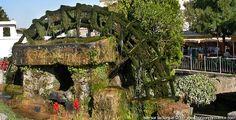 L'Isle sur la Sorgue : a town in Vaucluse - Provence, a report ...