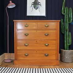 This satinwood chest of drawers dates back to the early 1900s and offers lots of storage. It has marks and blemishes commensurate with age (see photos) but this certainly doesn