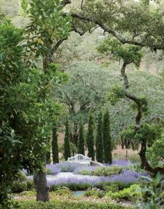 Traditional Garden by Suzanne Rheinstein and Associates and Ken Linsteadt Architects in California