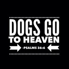 The Bible says it, so I believe it. So happy to know all my previous pets, and the future ones, will be in Heaven.