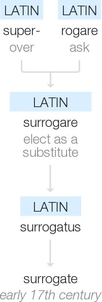 definition of surrogates - Google Search Basketball Iphone Wallpaper, 17th Century, Definitions, Google Search