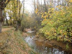 Río Alfambra en otoño, en el municipio de Aguilar del Alfambra, Teruel.
