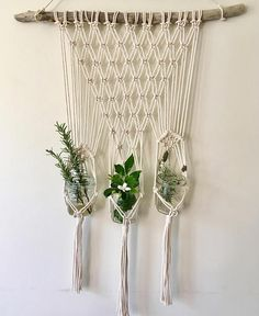 Items similar to Handmade Macrame Plant Hanger//Driftwood//Eclectic//Home Decor//Boho//Pot plants//Herbs//Succulents//Greenery on Etsy Macrame Wall Hanging Patterns, Macrame Hanging Planter, Macrame Plant Holder, Macrame Plant Hangers, Macrame Patterns, Hanging Succulents, Indoor Plant Hangers, Metal Plant Hangers, Wall Plant Hanger