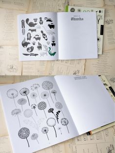 20 Ways to Draw a . . . | Little Book, Big Story