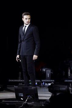 Liam Payne, secret agent