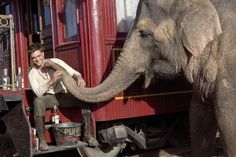 Water for Elephants I didn't like robert pattison till this movie