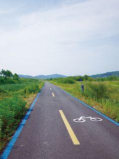 [독립적인 자전거 여행] (1) 서울에서 부산까지 자전거 타고 홀로 떠난 길