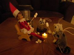 Elf on the Shelf Roasting Marshmallows This elf is having a grand ol' time with her racoon friends roasting marshmallows! How fun!