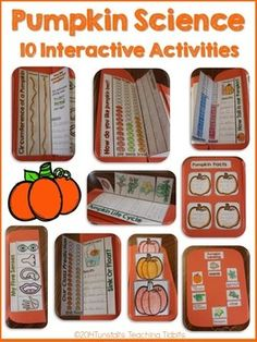 Pumpkins pumpkins pumpkins! Investigate pumpkins with these 11 Interactive Science Pumpkin Activities! Fill your science notebook or create a 3 dimensional pumpkin science book full of interactive hands on science lessons!