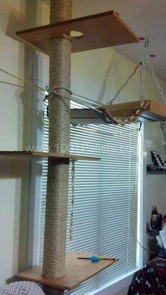 DIY: Pallet Cat Tree