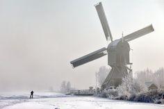 Zuid Holland, Nederland