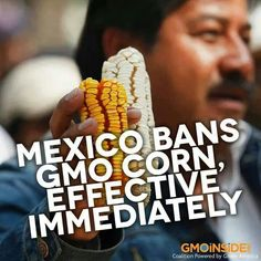Because food safety standards are now higher in Mexico than in the USA