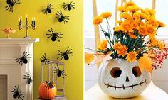 Aranhas, abóboras e sempre: laranja nas flores!