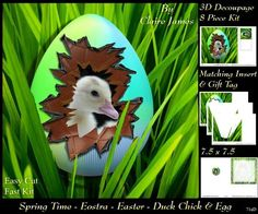 Spring Time Eostra Easter Egg Duck Chick Insert Tag on Craftsuprint - Add To Basket!