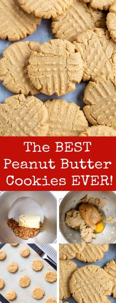 This is the BEST Peanut butter cookie you will try. This will make you love peanut butter. The best ever! This is the BEST Peanut butter cookie you will try. This will make you love peanut butter. The best ever! Peanut Cookie Recipe, Classic Peanut Butter Cookies, Best Peanut Butter Cookies, Best Cookies Ever, Peanut Butter Recipes, Best Cookie Recipes, Cookies With No Butter, Peanut Butter Biscuits, Baking Recipes