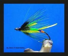 Salomon flies