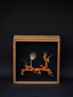 Wunderkammer Object , contemporary art, bone art Bones, Contemporary Art, Frame, Decor, Kunst, Picture Frame, Decoration, Decorating, Frames