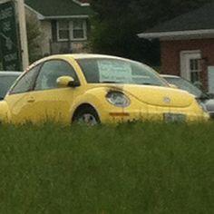 Bug car with eyelashes
