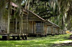 Evergreen Plantation, Louisiana is a tourist attraction, too, including original slave quarters The slave homes line a dirt road in the middle of sugar cane fields. History + Southern + Travel + Old Cabins + Moss + Oak Trees
