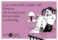 Funny Ecard: I just tried to kill a spider with hairspray. He survived, and his hair looks outstanding.