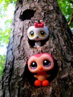 littlest pet shop owls in tree
