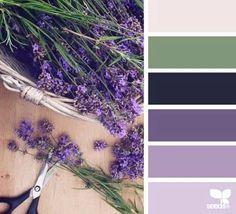 color pallet - lavender